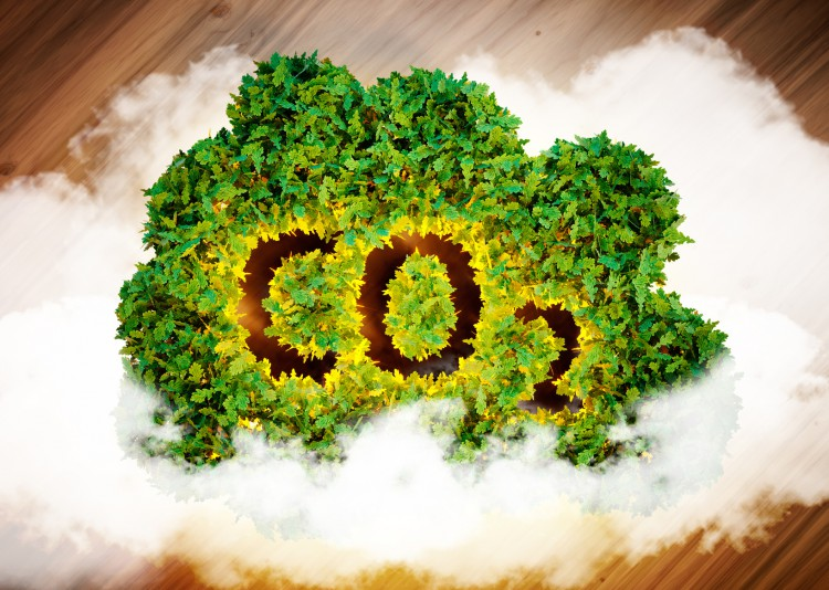 Fotolia_102432380_Greenhouse-Gas-Concept_M-e1455809685793
