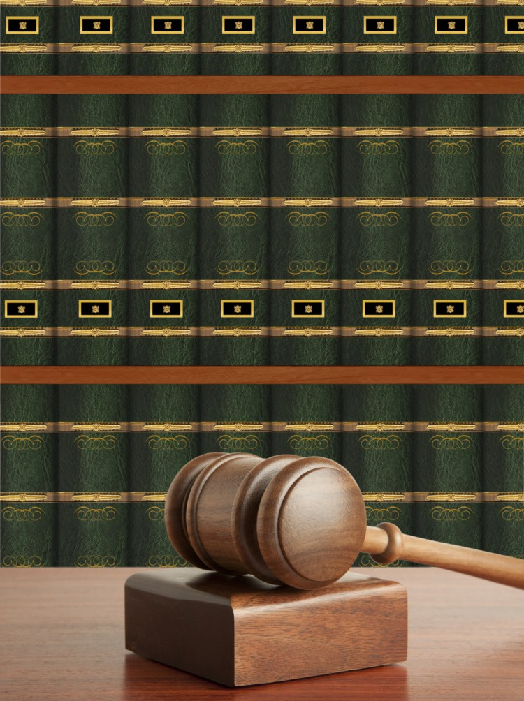 Fotolia_39782519_Gavel-and-Books-e1444764935683