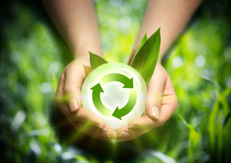 Fotolia_51335947_renewable-energy-in-the-hands_M-e1479489190889