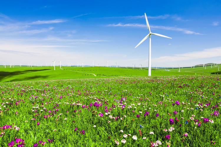 Fotolia_82850425_Wind-turbine-in-field_M-e1446146670134