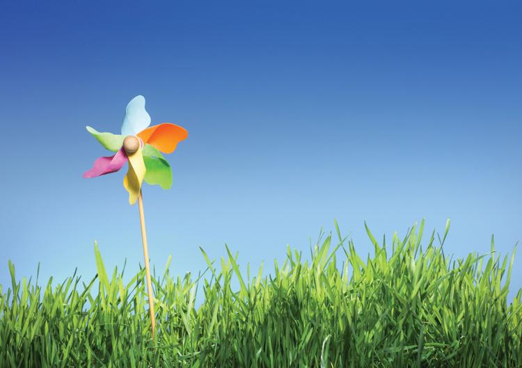 Pinwheel-Colourful-Grass-Web