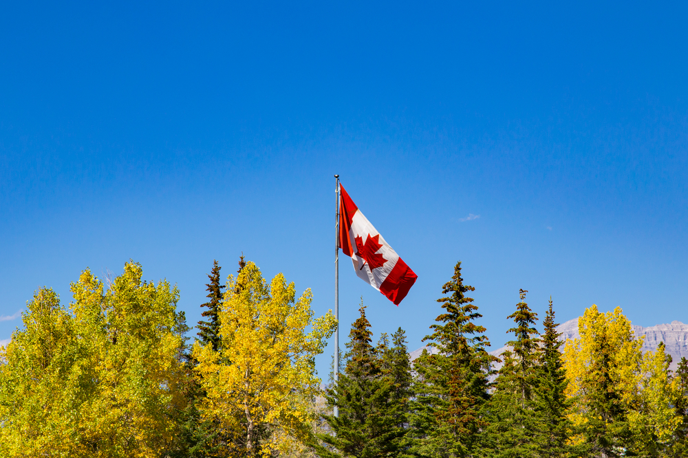 canada flag trees shutterstock_566083387