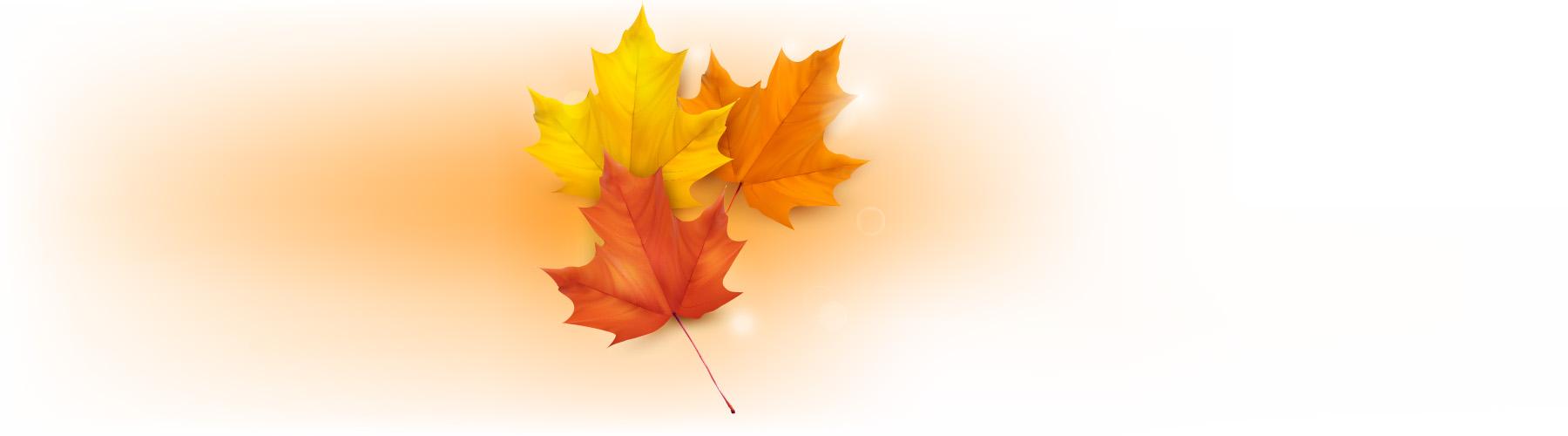 dbic_leafs