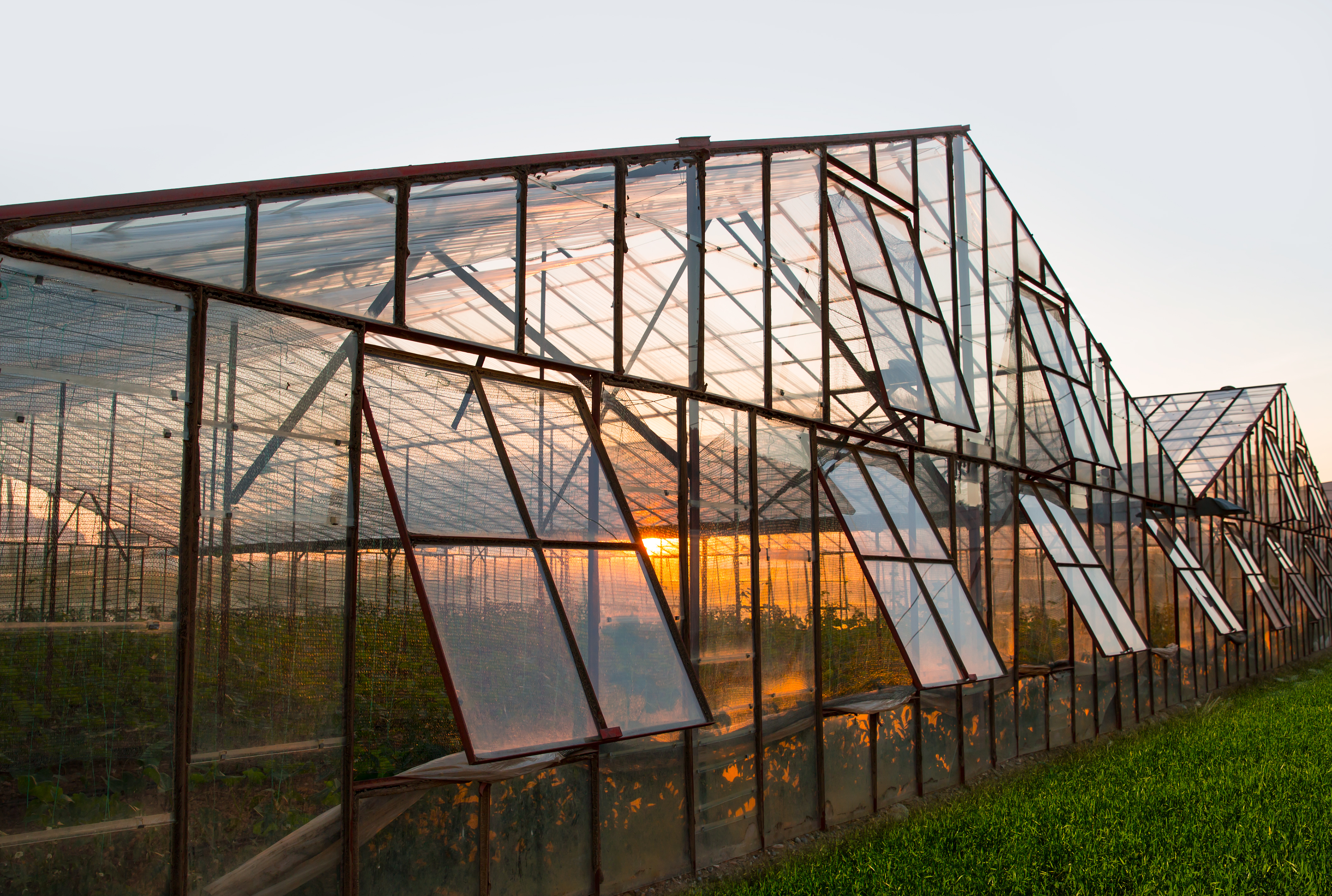 industrial greenhouse shutterstock_230468560