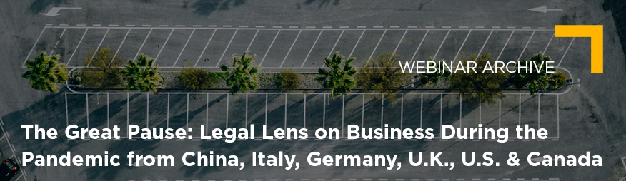 May 14 The Great Pause Legal Lens on Business During the Pandemic Archive 876x254