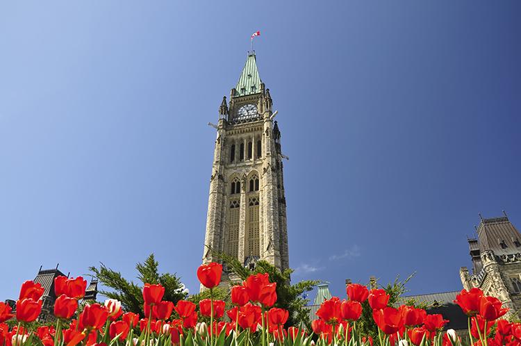 parliament shutterstock_web