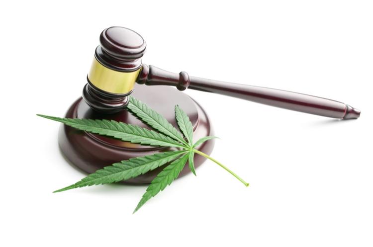 cannabis leaf and gavel web